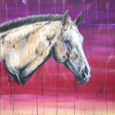 Sunset Appaloosa horse painting