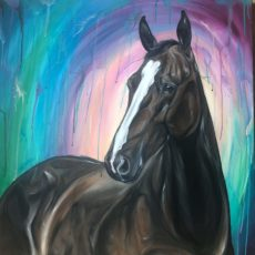 bay horse on colorful rainbow background